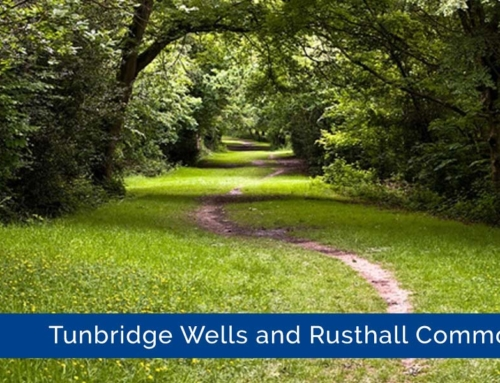 Tunbridge Wells and Rusthall Common
