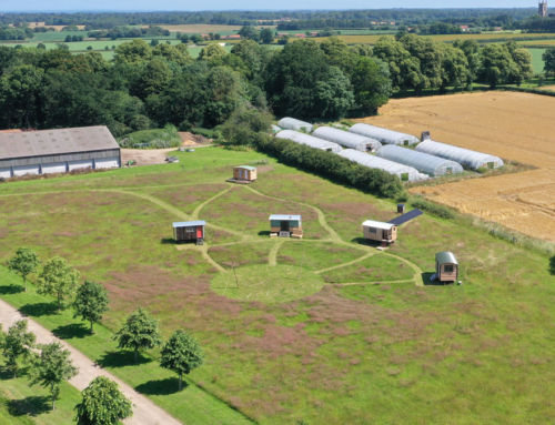 Farm Track East at Salle Moor Hall Farm